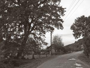 Війна в селі (продовження) ✑14✑