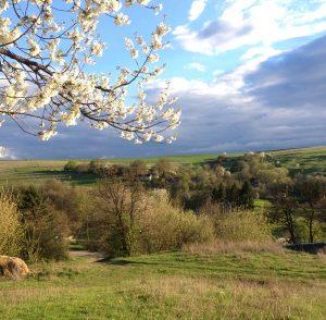 """""""Вірші про весну"""""""